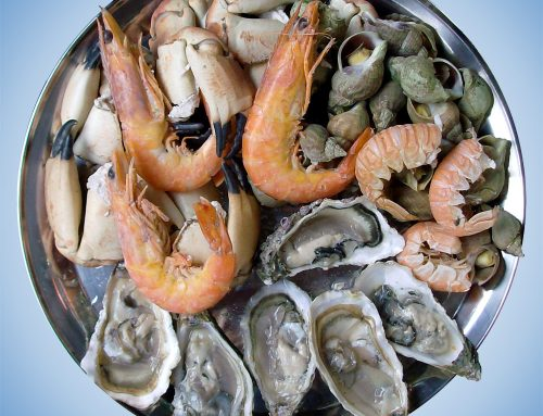 Oysters, Prawns and Fresh Seafood